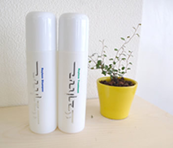 Rayless(レイラス)Shampoo&Treatment
